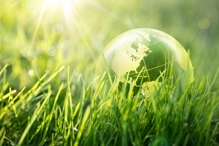 How Going Green Helps Your Business Reputation