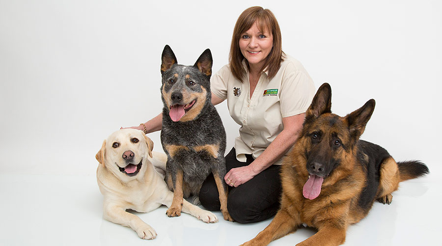 How Much Do Dog Trainers Make?