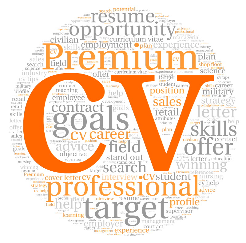 4 Ways To Choose The Best Resume or CV Writer