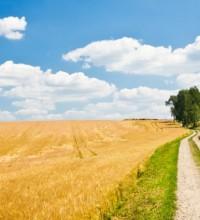 agriculture-landscape-940x455