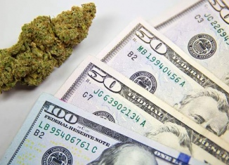 5 Questions to Ponder When Considering POS Software for Cannabis Sales