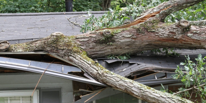 About Roof Damage Insurance Claims Adjuster In Fort Lauderdale Florida